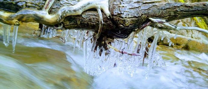 cascata-stoviglie-biocompostabili